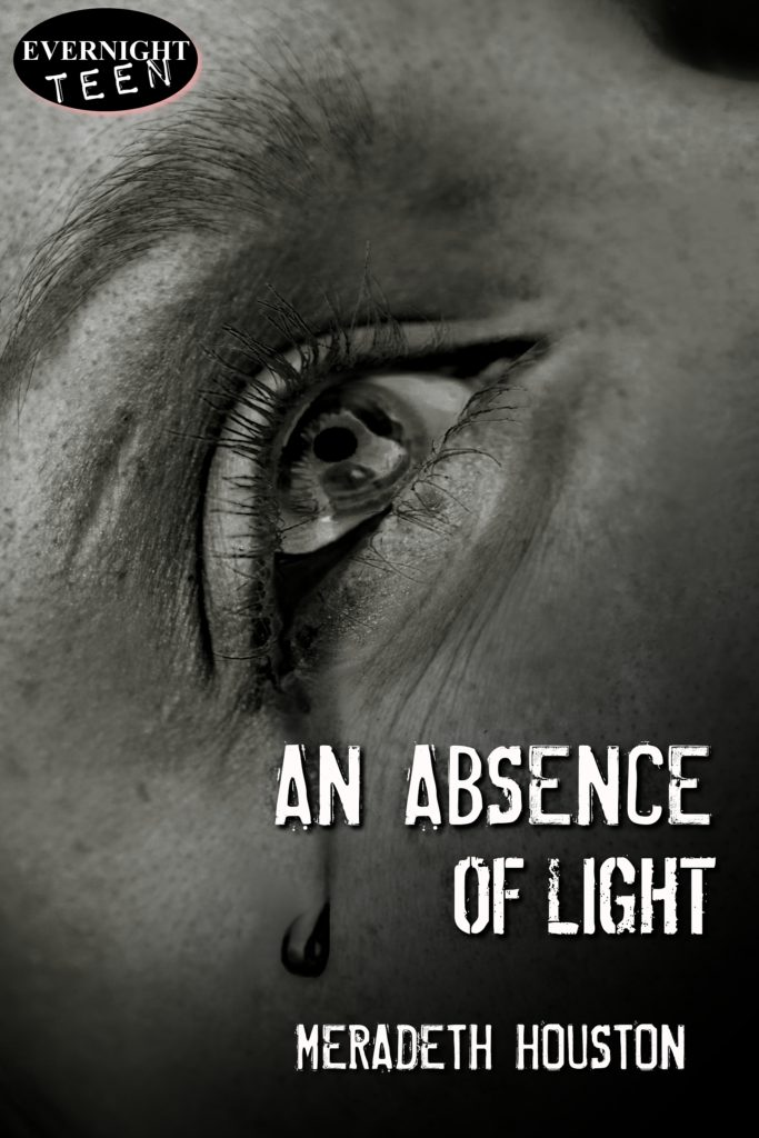 Book Cover: An Absence of Light